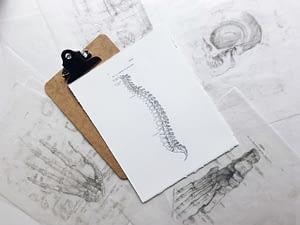 Beratung in der Osteopathie als Skizzenhafte Darstellung