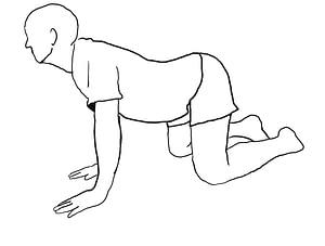 training der Lendenwirbelsäule